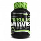 Tribulus Maximus BioTech USA 90 таб